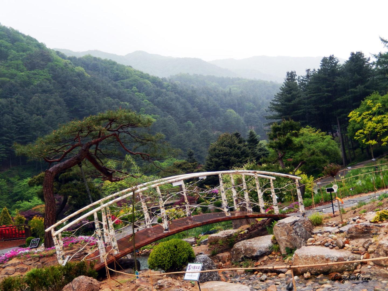 Pagoda Valley - Jardin du Matin Calme
