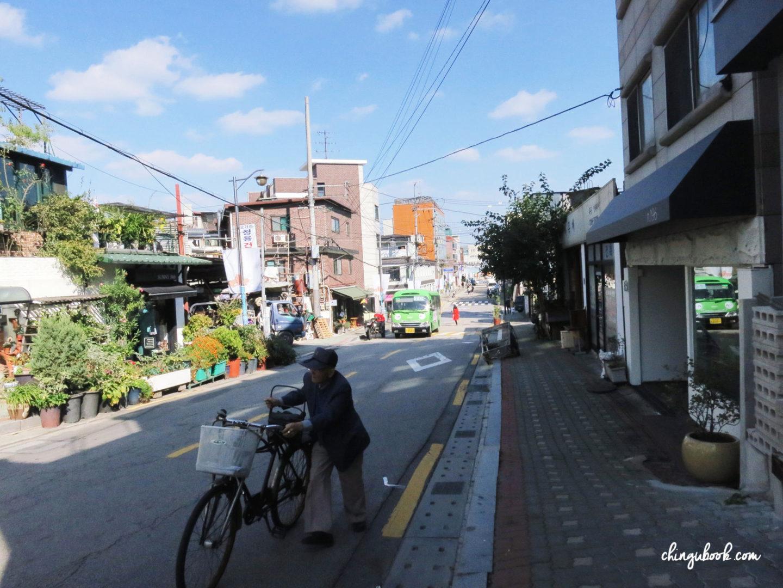 Balade printemps Corée du Sud