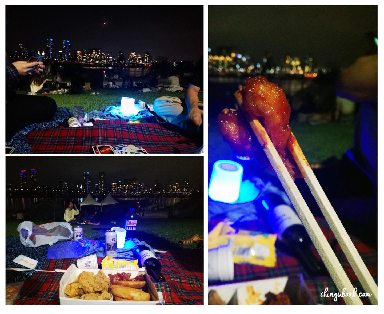 picnic han river printemps
