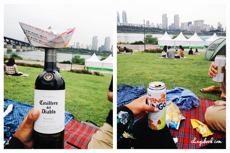 picnic printemps corée du sud