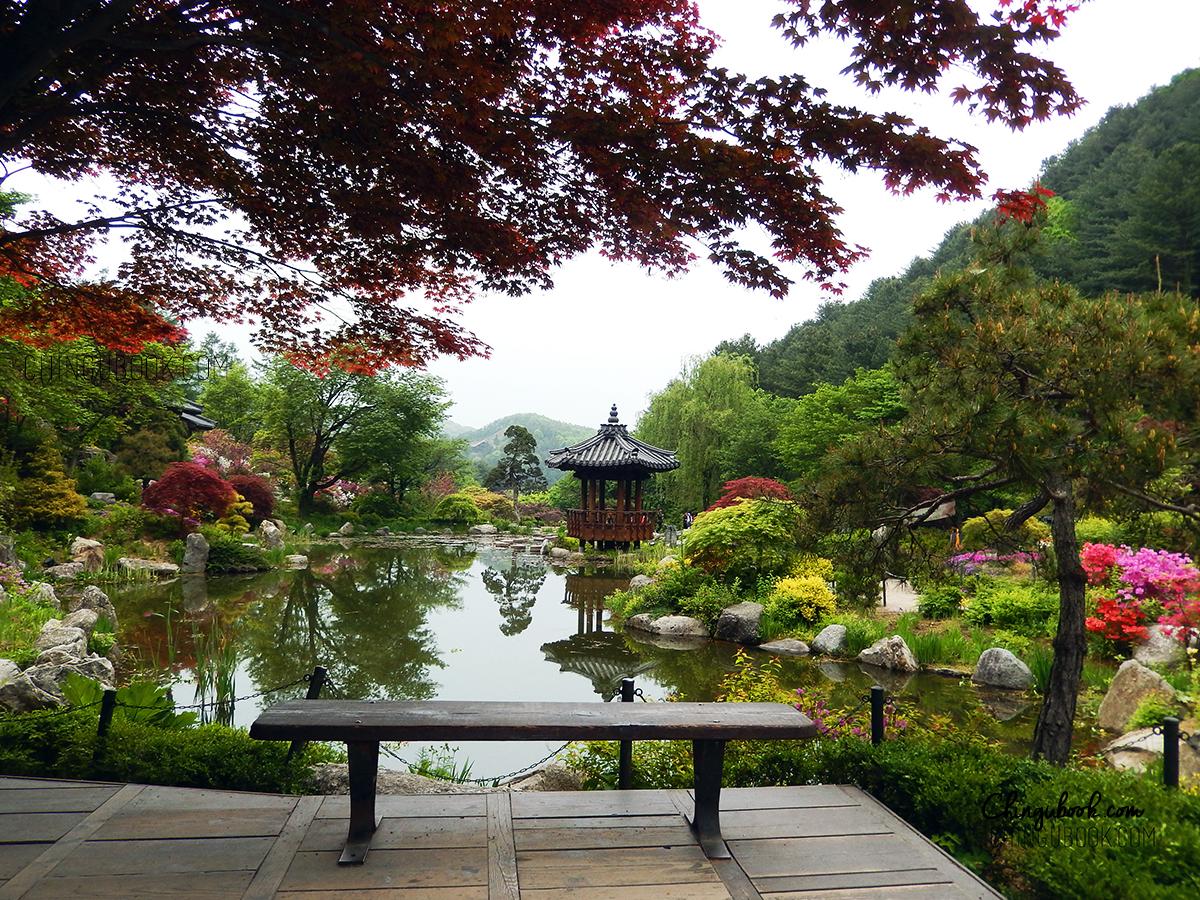 Garden of the Morning Calm in autumn