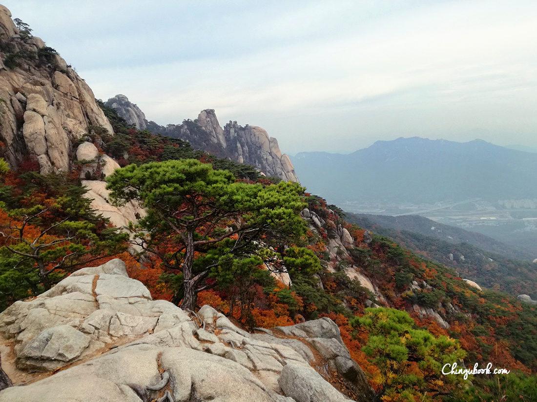 paysage d'automne Corée du Sud